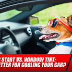 Remote Car Start vs. Window Tint: Which is Better for Cooling Your Car?